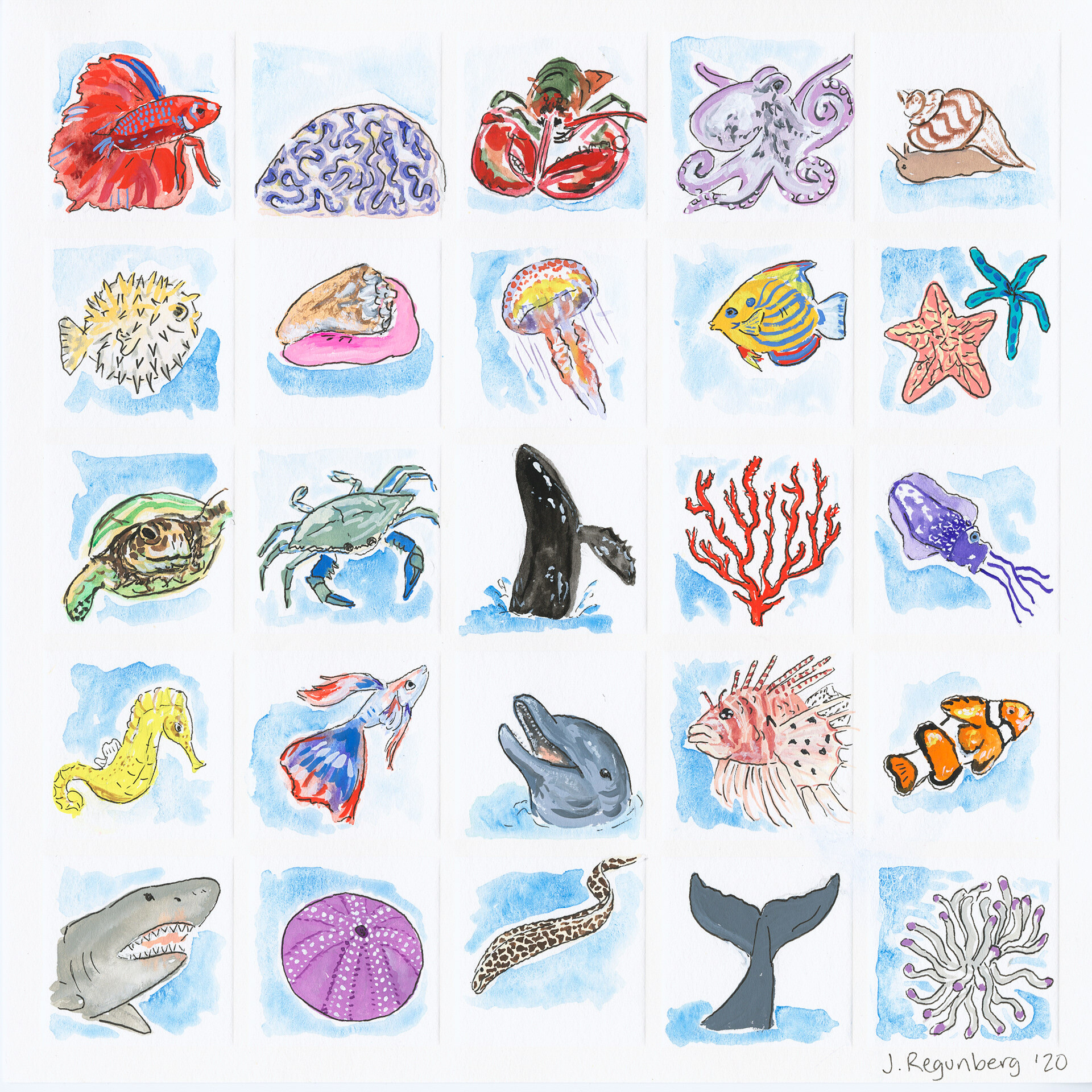 M is for Marine Life